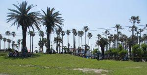 小坪海浜公園